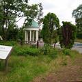 Photos: 英国庭園の謎