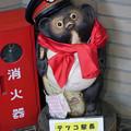 Photos: 駅長