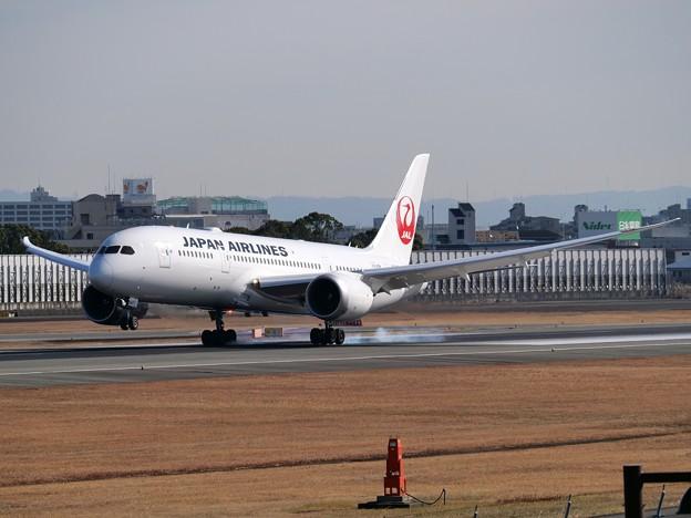 Photos: 鶴丸B8