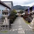 Photos: 明智塚