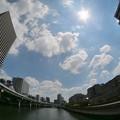 Photos: 堂島川
