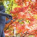 Photos: 芸術の秋