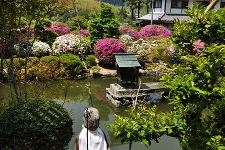 船宿寺の池