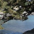 写真: DSC02313 堂ヶ島