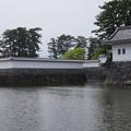 写真: DSC02422小田原城址公園