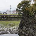 写真: DSC02455小田原城址公園