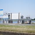 写真: DSC02667多摩川