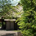写真: DSC02677たてもの園