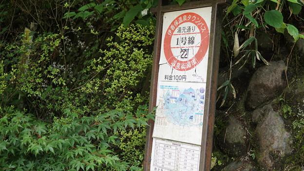 写真: 伊香保神社付近36