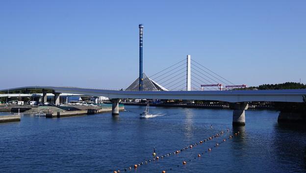 DSC07586八景島春散歩