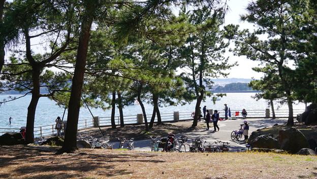 DSC07590八景島春散歩