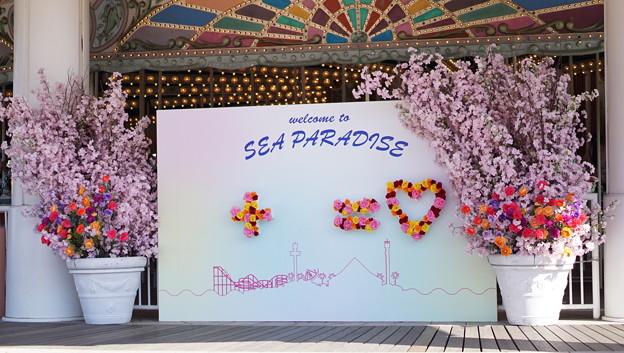 Photos: DSC07597八景島春散歩