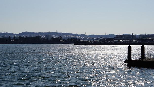 DSC07617八景島春散歩