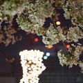 Photos: DSC07744みなとみらい夜景散歩春