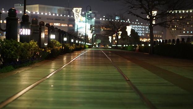 DSC07751みなとみらい夜景散歩春