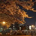 DSC07759みなとみらい夜景散歩春