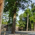 写真: DSC08052-01豊橋・鳥羽・お伊勢参りの旅
