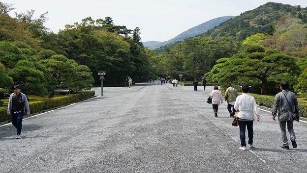 DSC08066-01豊橋・鳥羽・お伊勢参りの旅
