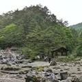 写真: DSC09040-01草津一人旅