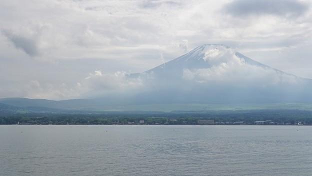 Photos: DSC09119-01山中湖