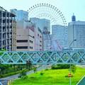 横浜カメラ散歩DSC09828-01
