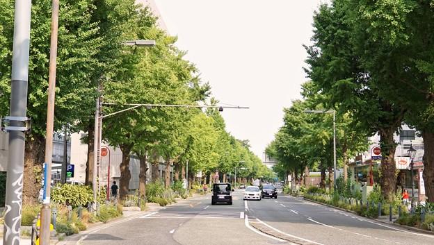 横浜カメラ散歩DSC09843-01