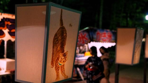 鎌倉ぼんぼり祭2