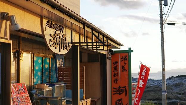 Photos: DSC02424-01城ヶ島・三浦プチ旅