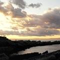 Photos: DSC02431-01城ヶ島・三浦プチ旅