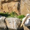 金沢自然動物園3