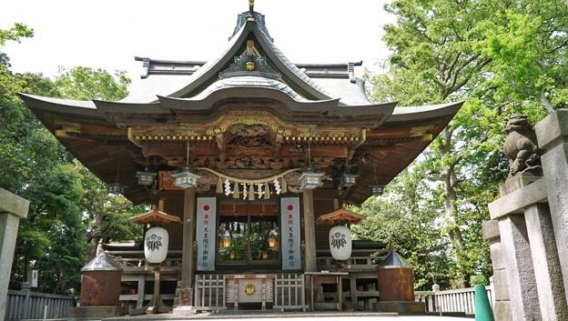 TON04873白幡神社(藤沢)