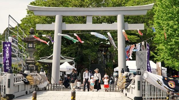 白幡神社(藤沢)