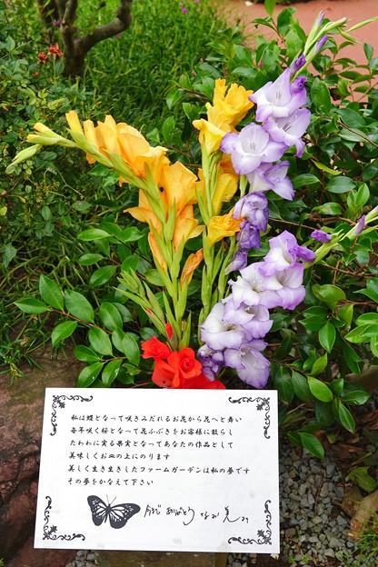 TON05452七夕&birthday2019