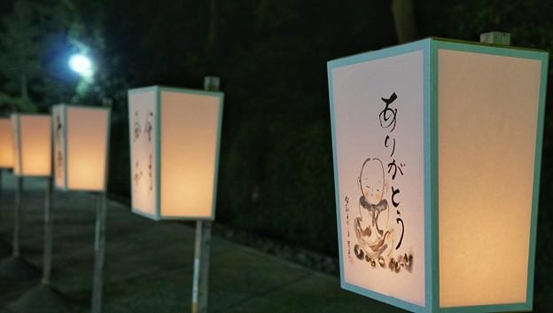 Photos: TON05768鎌倉ぼんぼり祭り