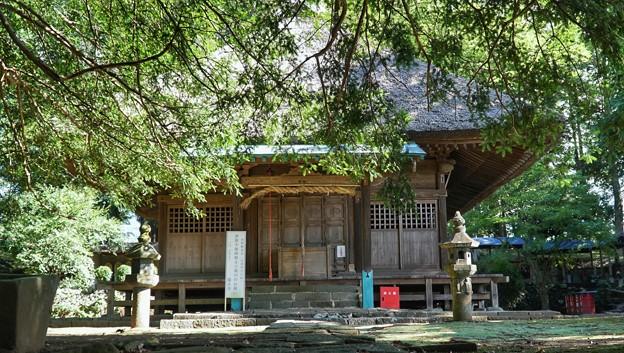 TON05871赤野観音堂(あけのかんのんどう)