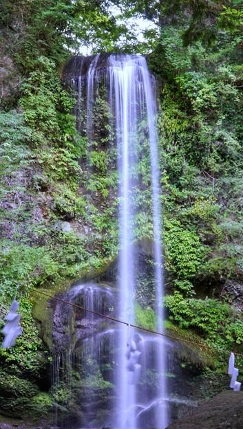 TON05913夕日の滝