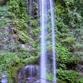 Photos: TON05913夕日の滝