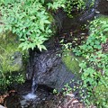 TON05914夕日の滝