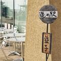 Photos: TON06010益子ひまわりまつり2019