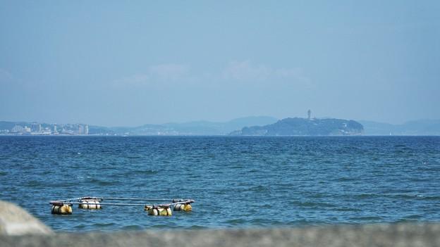 TON06085茅ヶ崎漁港