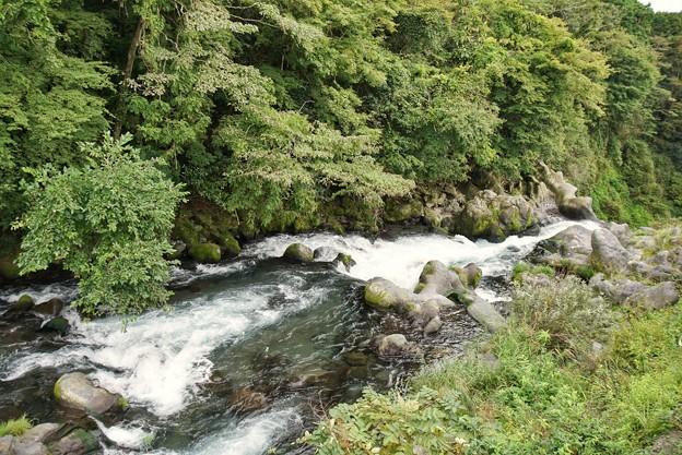 TON06442白糸の滝