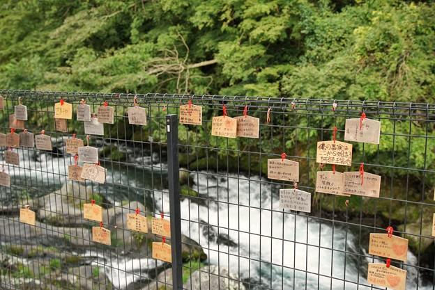 TON06448白糸の滝