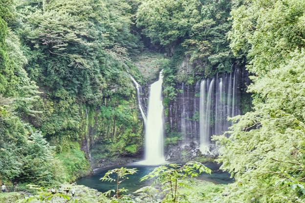 TON06458白糸の滝