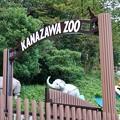 TON07019金沢動物園【自然編】
