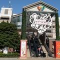 Photos: TON08249横浜マラソン2019