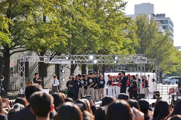 TON08278横浜マラソン2019