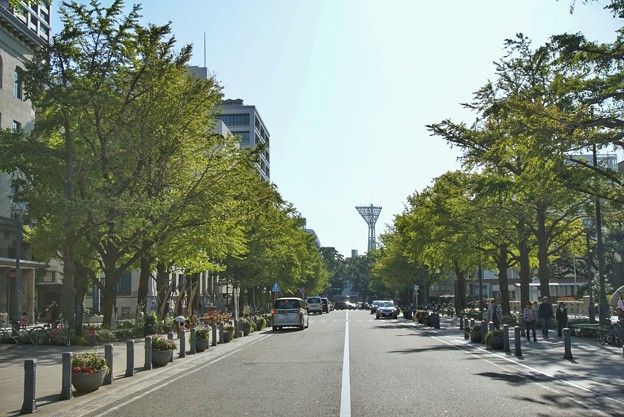 Photos: TON08290横浜マラソン2019