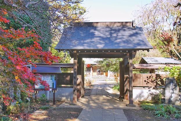 TON08490紅葉(興禅院)