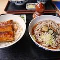 TON08503成田山紅葉狩りR1