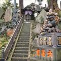 TON08512成田山紅葉狩りR1